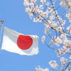 06-Japanese Food